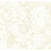 Oil Slick Wallpaper