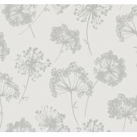 Ammi Daisy Bennett Wallpaper
