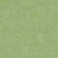 Veining Leaf Texture Evergreen Wallpaper