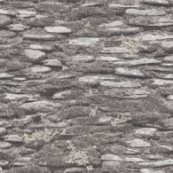 Rock Wall Evergreen Wallpaper