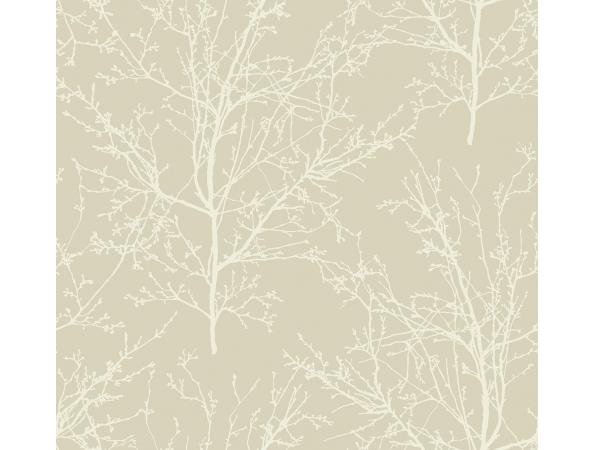 Winter Branches Wallpaper