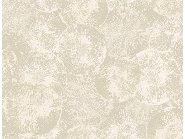 Petrified Wood Textures Wallpaper