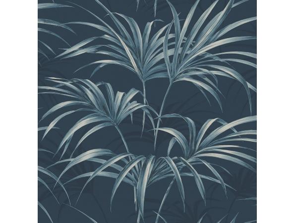 Open Palm Leaf Maui Maui Wallpaper