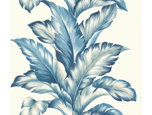 Big Leaf Maui Maui Wallpaper