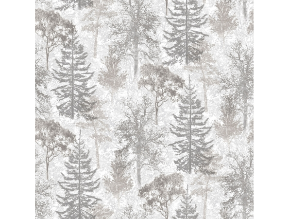Trees Evergreen Wallpaper