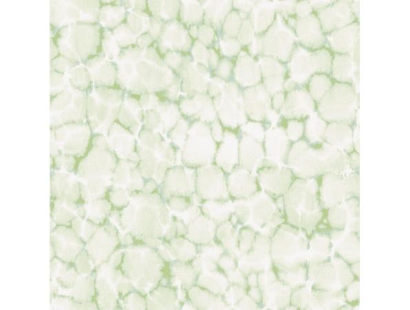 Reflections Evergreen Wallpaper