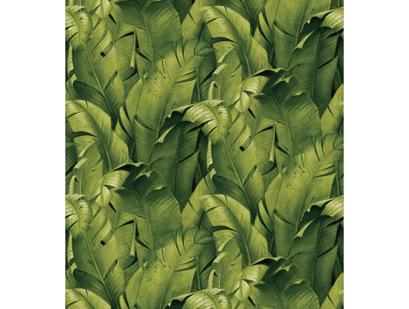Banana Leaf Charleston Mural